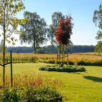 Planering och plantering – Utby